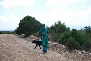 Búsqueda con perros. Foto JLP.
