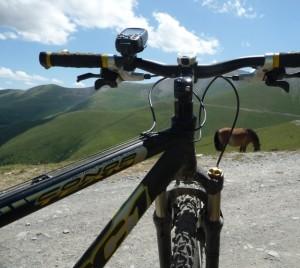 La bicicleta es un medio de transporte asequible, ecológico y saludable.