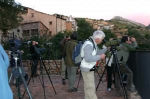 Intentando fotografías pájaros en Alquézar. Foto R.S.