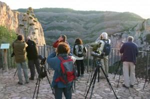 Tour operadores avistando pájaros en el mirador de Alquézar. Foto R.S.
