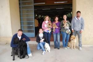 Asistentes al Concurso Canino de Monzón. JLP.