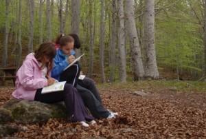 Unos niños pintan los bosques.