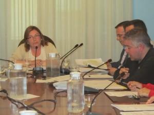 Vilarrubí defiende el sueldo de Lanau. JLP.
