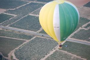 Vista aérea de la vendimia de Bodega Pirineos. Foto R.S.