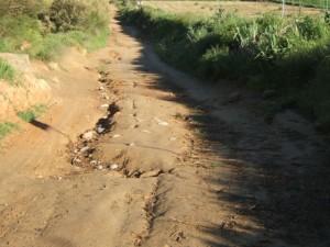Camino de Monzón.