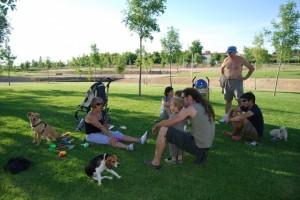 Vecinos de Monzón con sus perros en el parque de la Jacilla. JLP.
