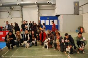 Un grupo de participantes con sus perros. JLP.