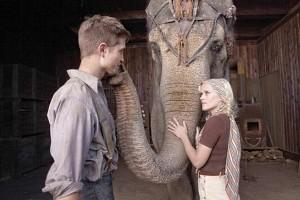 Un estudiante de veterinaria sin recursos económicos, Jacob (Robert Pattinson), conoce y se enamora de Marlena (Reese Witherspoon), la estrella de un circo de otra época. Ambos descubren la belleza que existe bajo la carpa del circo, y empiezan a conectar a través del sentimiento que les suscita un elefante muy especial. Contra todo pronóstico –lo que incluye la furia del carismático pero peligroso marido de Marlena, August (Christoph Waltz)–, Jacob salva a Marlena de una vida desgraciada y ambos encuentran al amor de su vida. ELSEPTIMOARTE.NET
