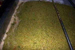 La uva de Pirineos es de gran calidad.