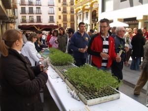 Reparto de plantas en la plaza del Mercado. José Luis Pano.