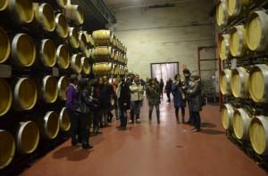 Una visita a Viñas del Vero. JLP.
