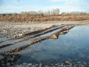 Afecciones en el río Cinca.