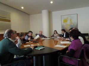 DPH_ComisionDesarrollo_febrero2015